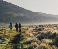 8-DAYS BALE MOUNTAINS TREKKING